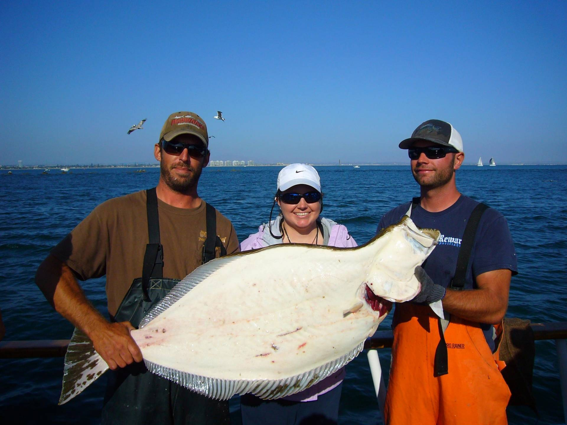 Unbelievable hali on point loma bloodydecks for Point loma sportfishing fish count