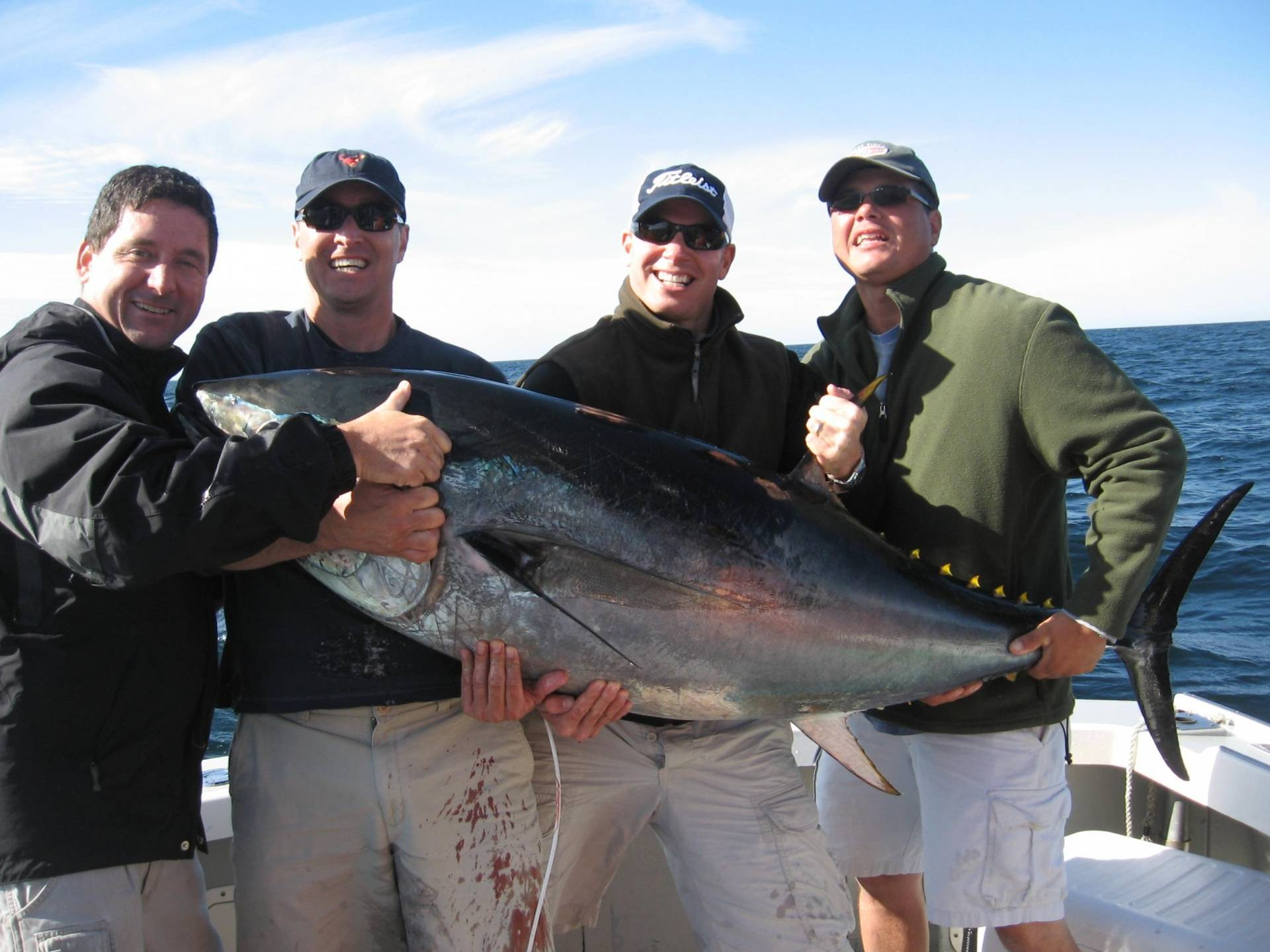 Mass bay tuna report by mass bay guides saltwater for Mass fishing report