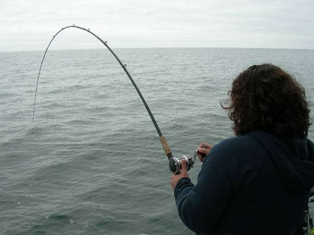 What's the perfect salmon set up (rod/reel/line weight