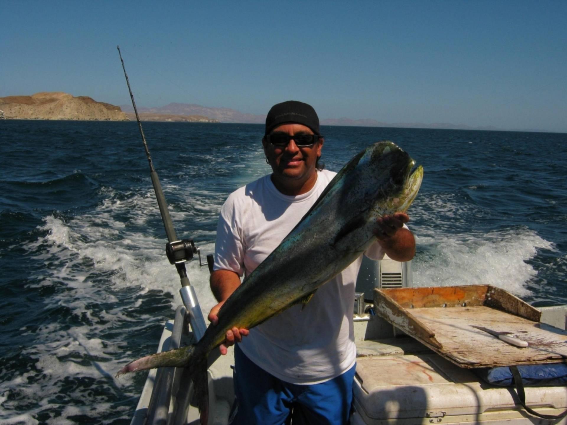 Bahia de los angeles 9 24 9 25 saltwater fishing forums for Fishing in los angeles