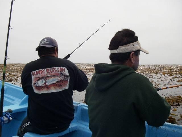 Sacramento reef and isla san jeronimo baja california for Sac bee fishing report
