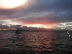 NS Sunrise 2011.jpg