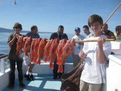 Rockfish 2012 023.jpg