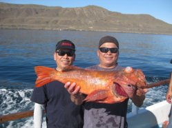 Rockfish 2012 011.jpg