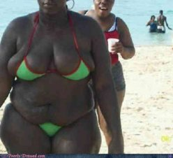 epic-fail-photos-poorly-dressed-this-is-not-what-we-intended-when-we-made-the-bikini.jpg