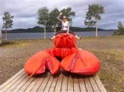 riding lobster 1.jpg