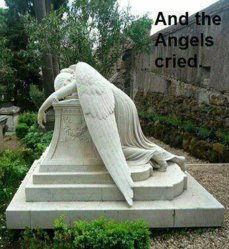 And the Angels cried.jpg