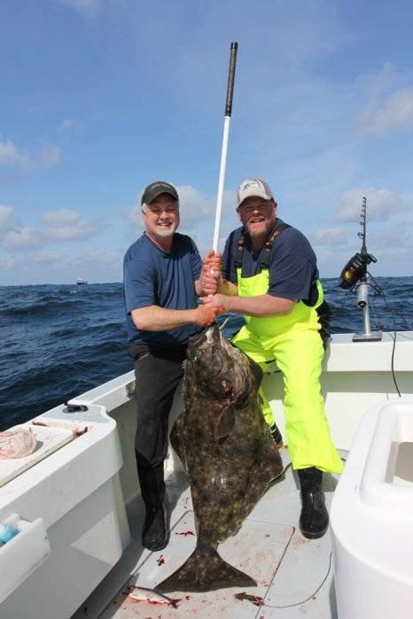 A great day halibut and ling fishing in westport bloodydecks for Westport wa fishing report