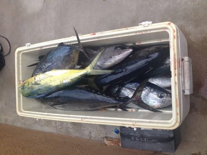 Sunday grand slam bloodydecks for Elaine b fishing reports