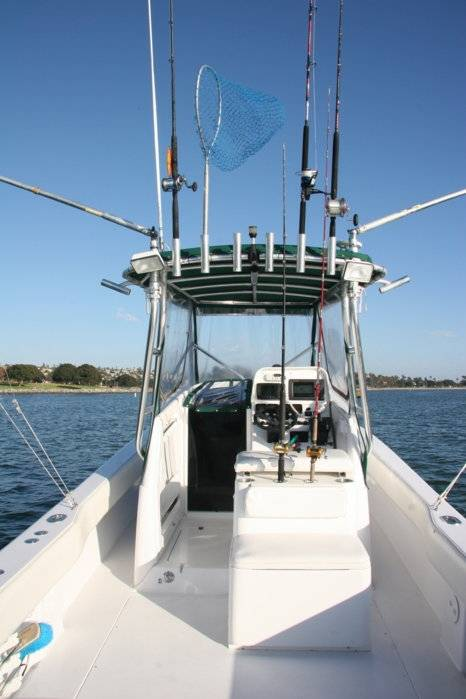 Nautic Star Boats >> PRICE REDUCED TO $84K ON MY CONTENDER 31 FISH AROUND WITH ...