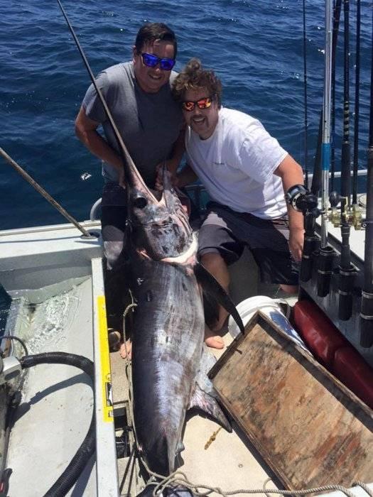 6 1 15 dana point swordfish saltwater fishing forums for Dana point fish report