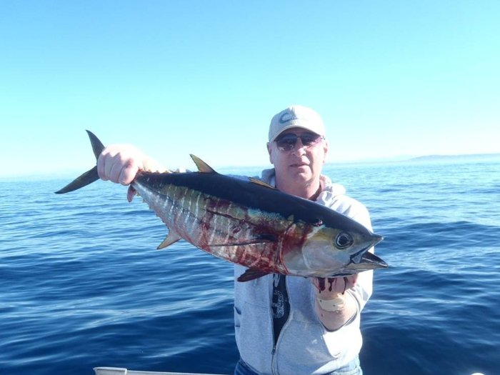 La jolla canyon on the ponies saltwater fishing forums for La jolla fishing