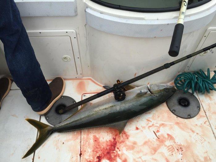 fishing 6-8 2.jpg