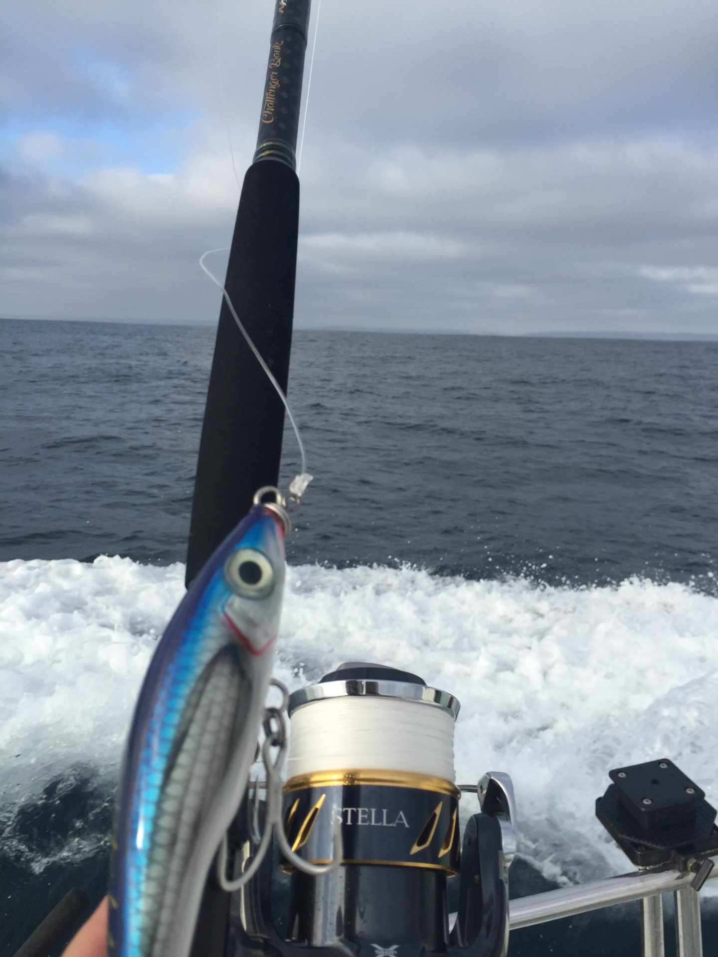 Bluefin popping with spinning gear   Page 13   Bloodydecks