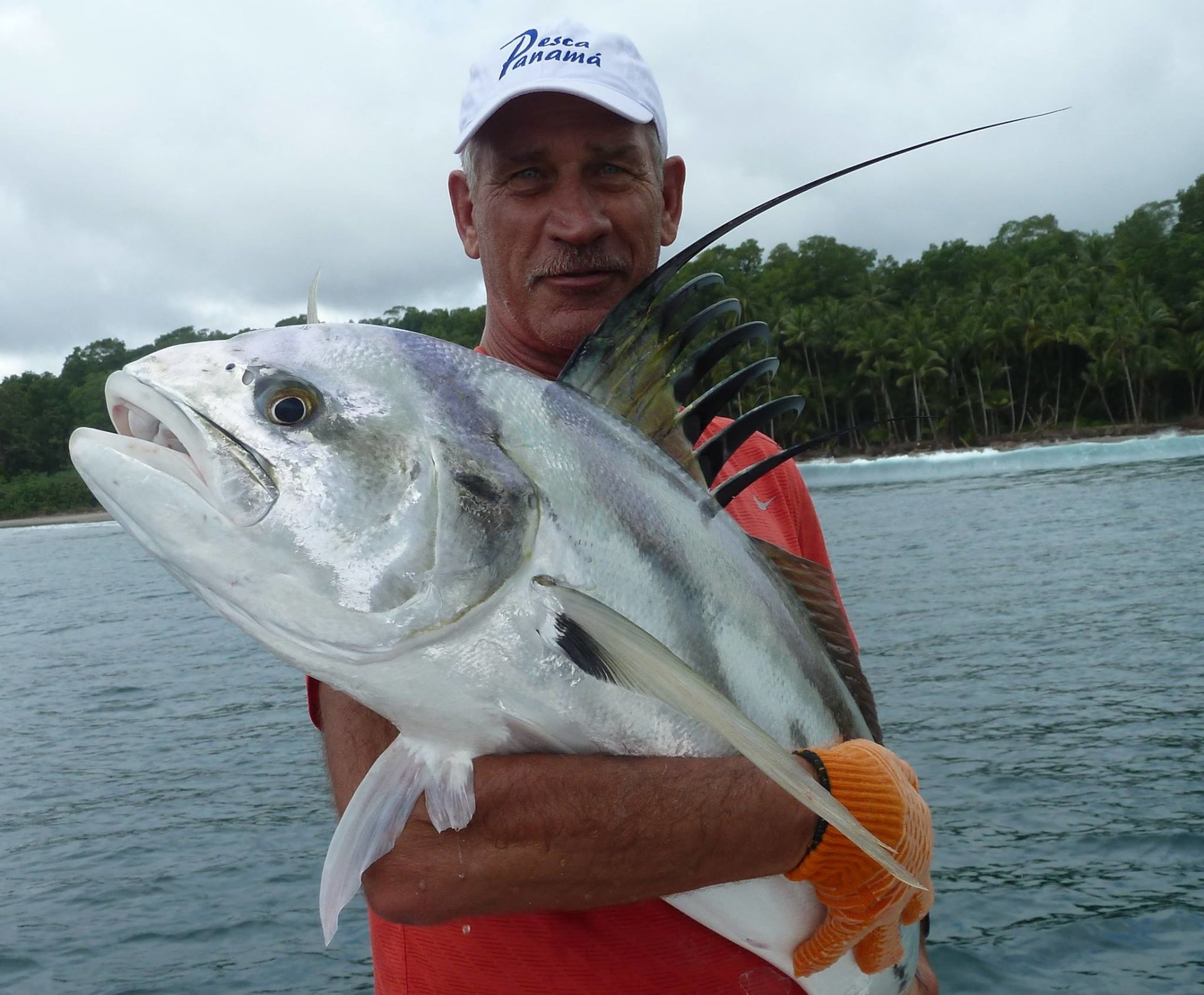 Pesca panama fishing report bloodydecks for Bloodydecks fish report