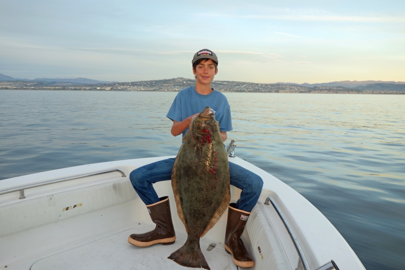 Dana point halibut 1 7 17 bloodydecks for Dana point pier fishing