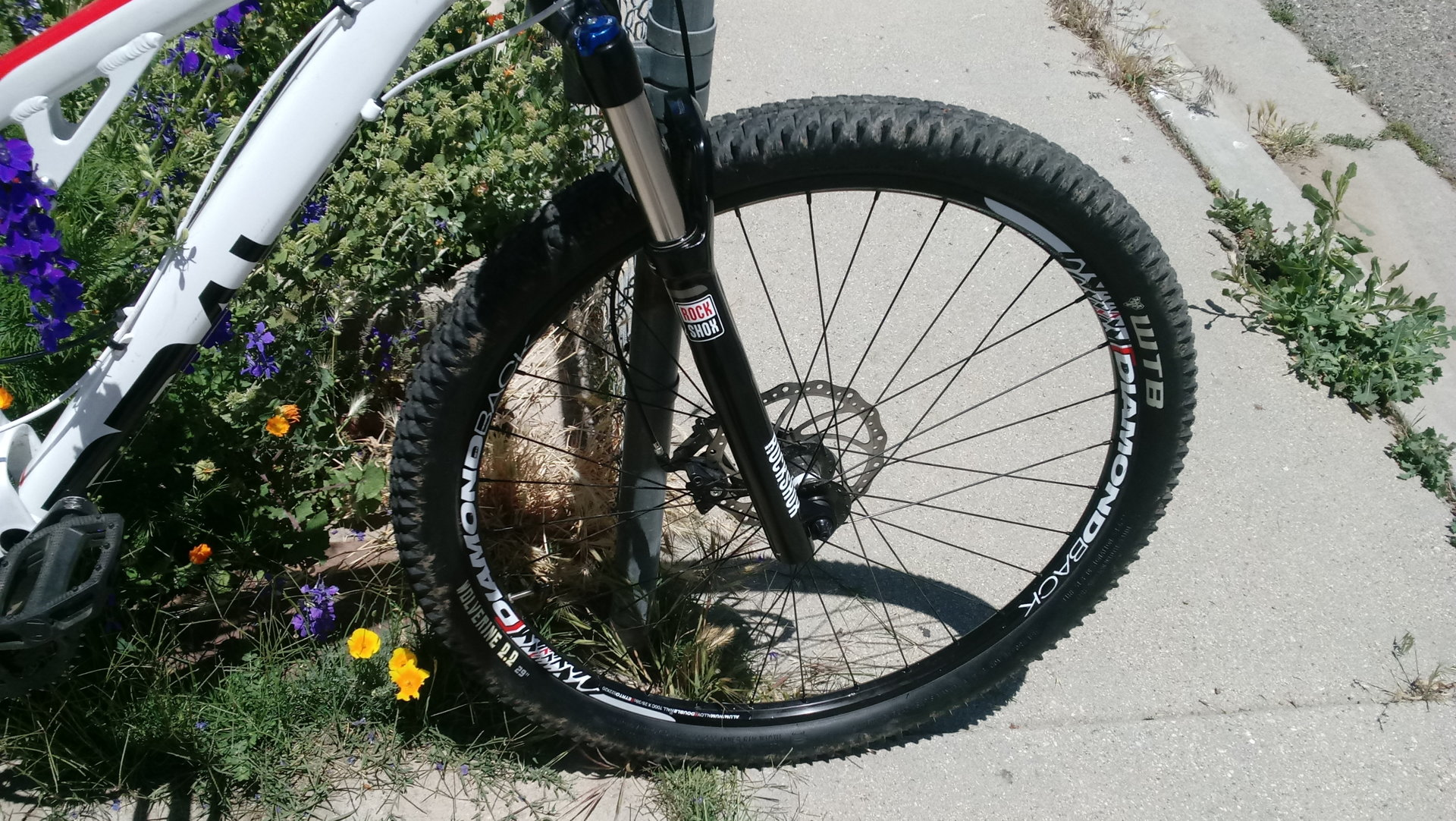 Diamondback Recoil 29er Mountain Bike With Upgrades Trade For Reel