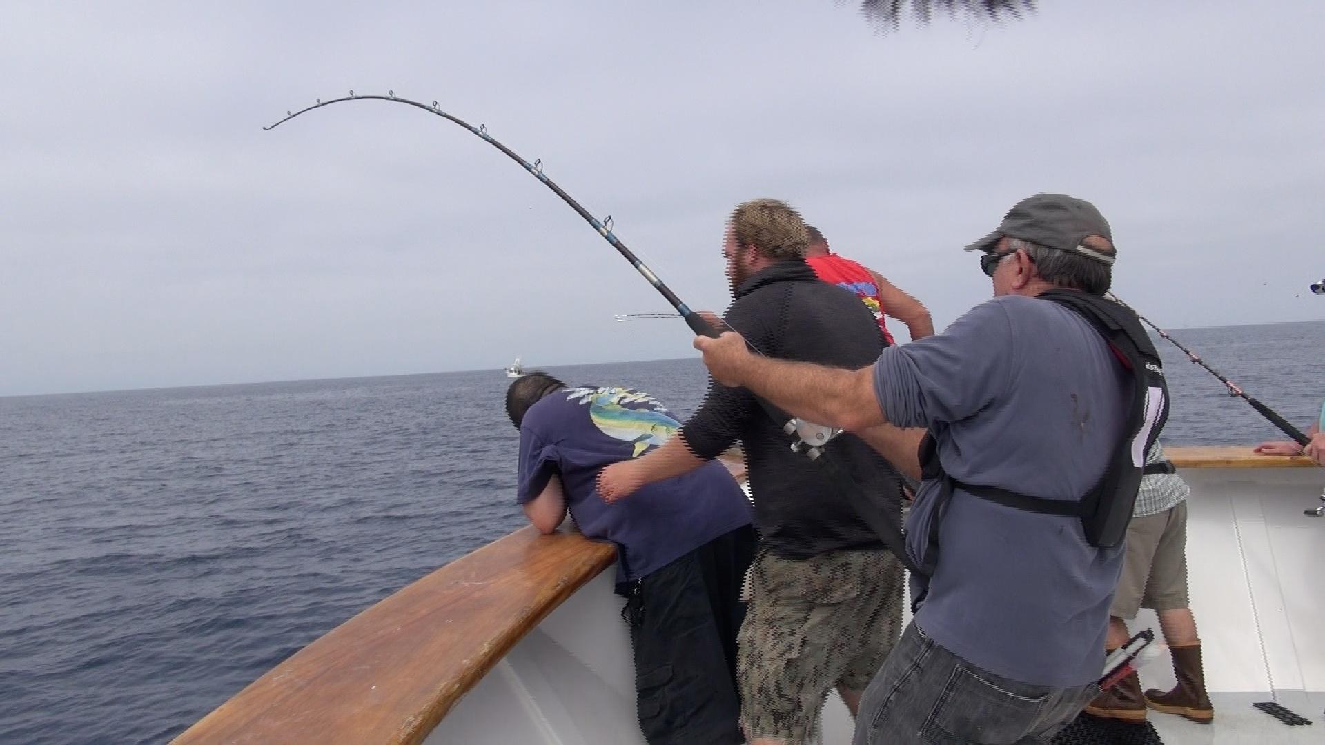 Epic Big Bluefin Tuna Battles Sea Adventure 80 1 5 Day