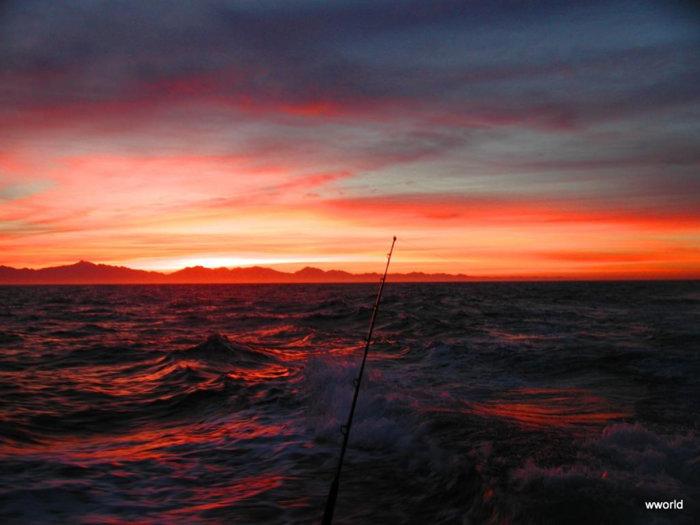 1-PVreturn trip sunrise.jpg
