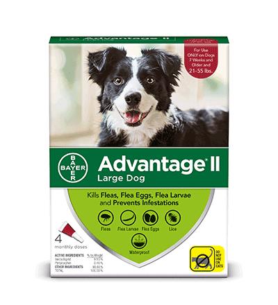 adv-ii-dogs-L-4.png